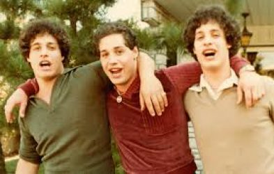 Wardle - Three Identical Strangers